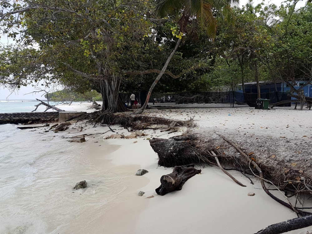 Climate Emergency Has Been Declared In Maldives