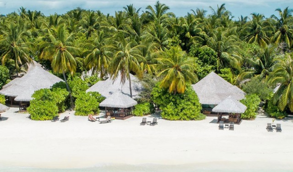 Experience The Unforgettable Marine Life With Ocean Dimensions at Kihaa Maldives.