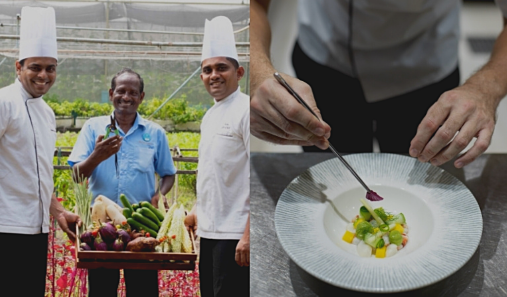 Kuredu Maldives Introduces Produce-To-Plate Dining Experience