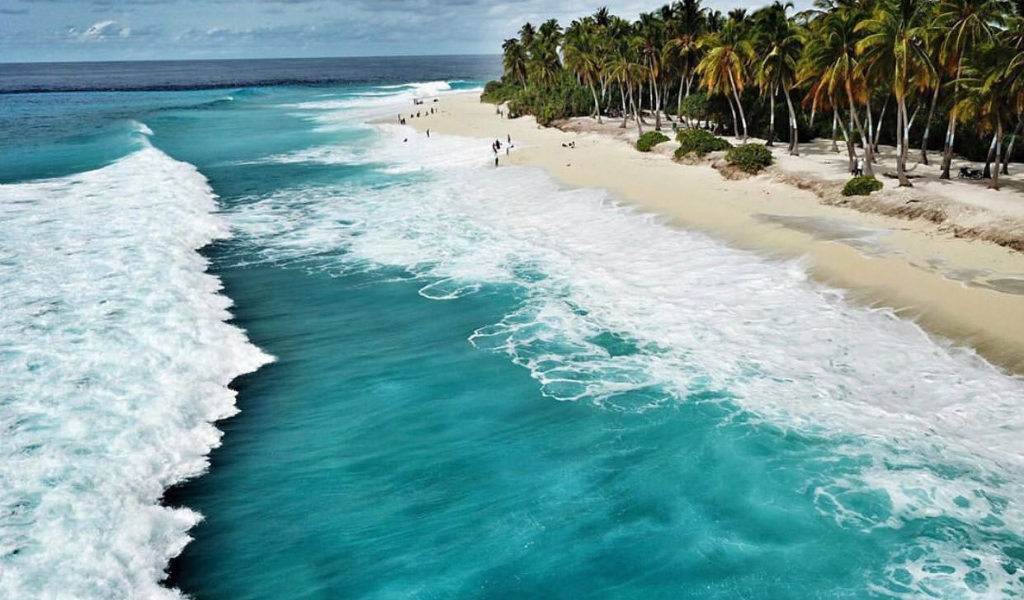 Next Up, An Island Where the Sharks Dance, Waves Party & Natural Beauty Remains Untouched