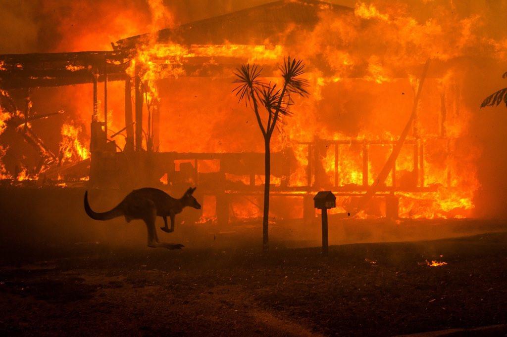 Australia Fires Burn the World- Even Maldives