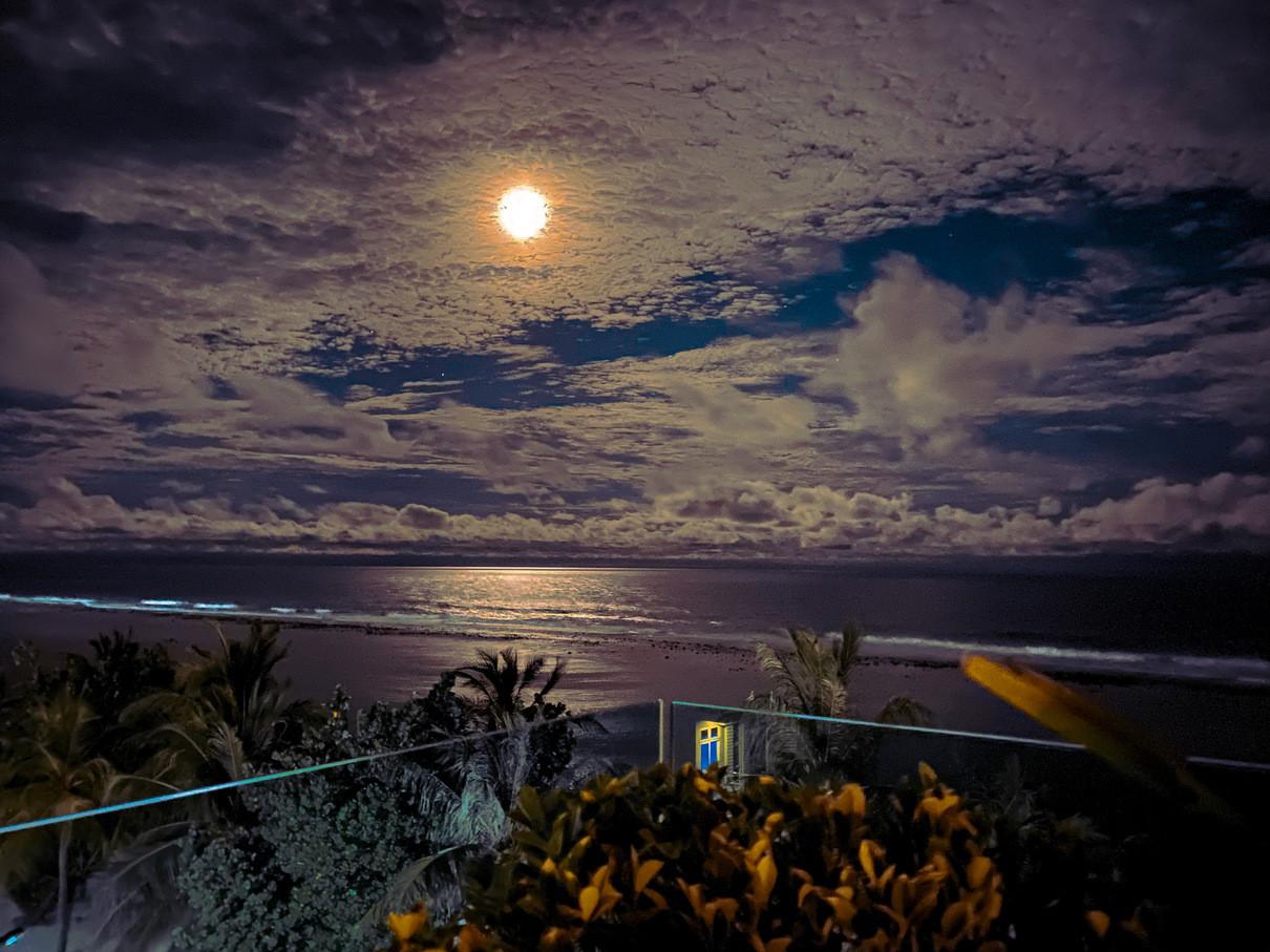 Apple Photo Contest- Best Night Mode Photos