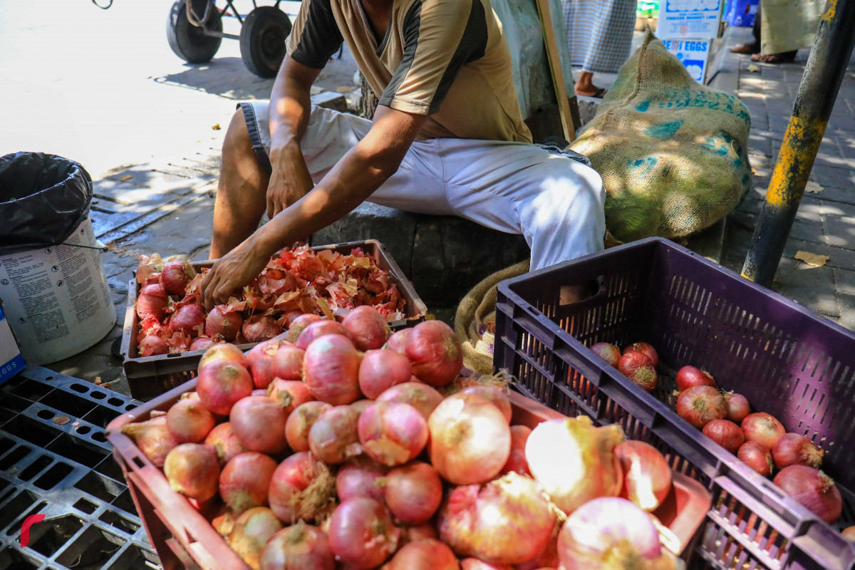 The Story of Onion Prices in Maldives