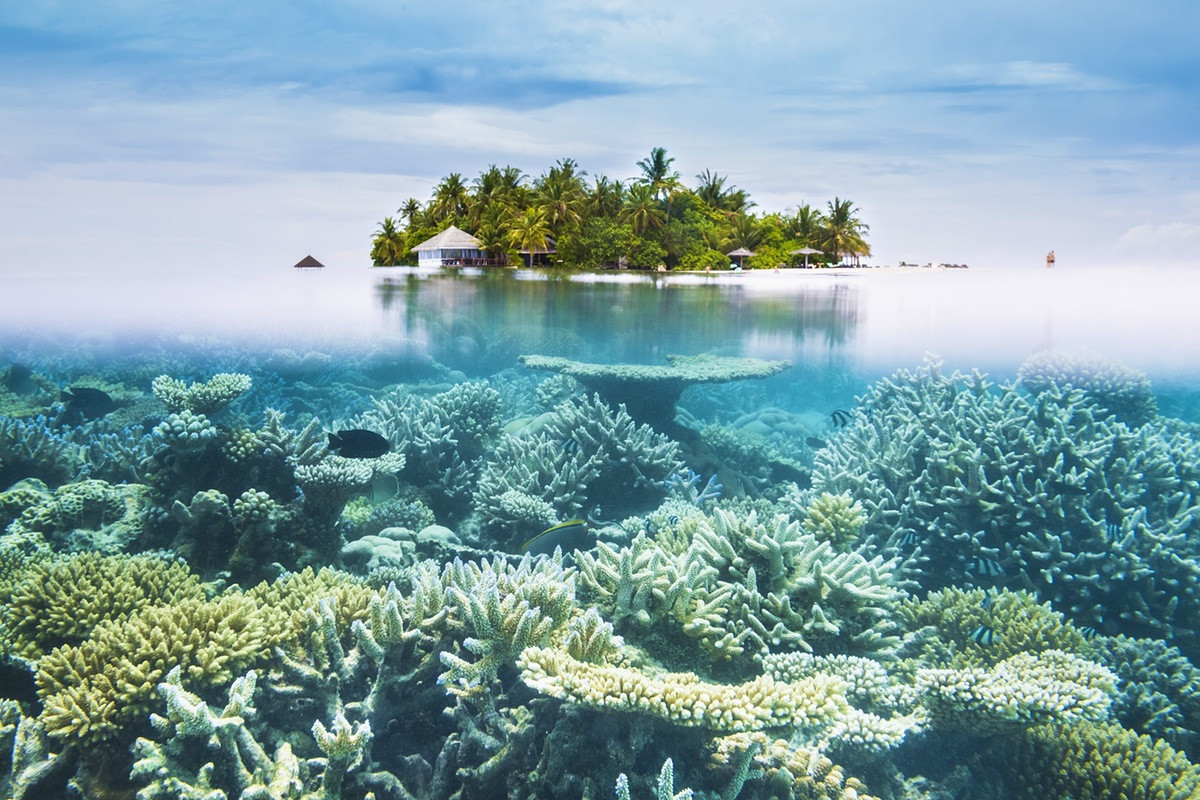 Protecting Fragile Areas in Maldives