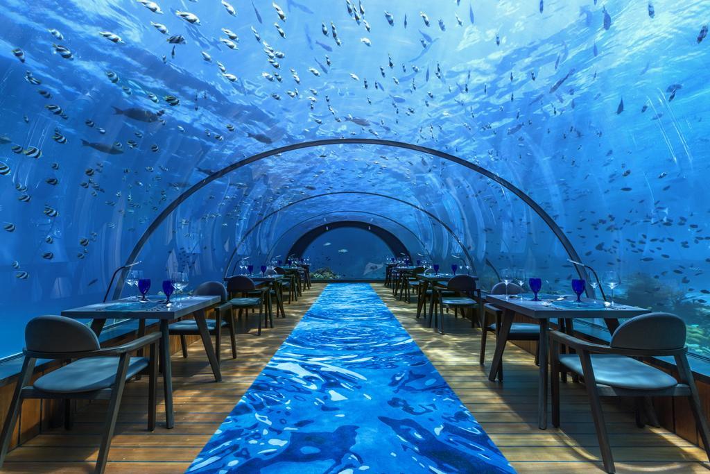Inside the World's Largest Underwater Restaurant
